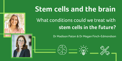 Stem cells and the brain: what conditions could we treat in the future?